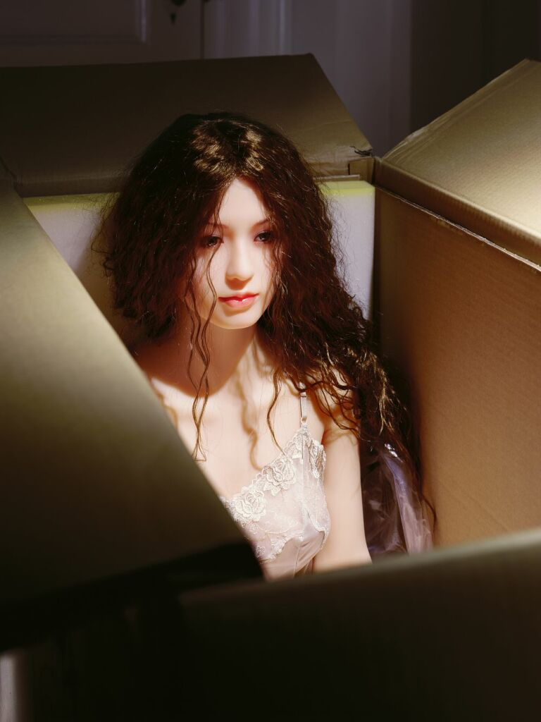 Laurie Simmons, The Love Doll/Day 27/Day 1/New in Box, 2010.