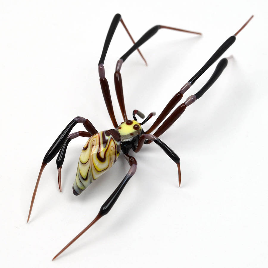 incroyable insecte