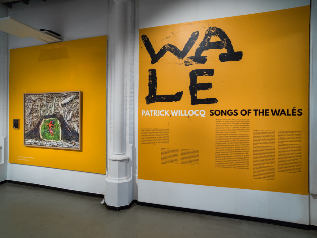 Vue de l'exposition Patrick Willocq, Songs of the Walès, Musée de la photographie (1)