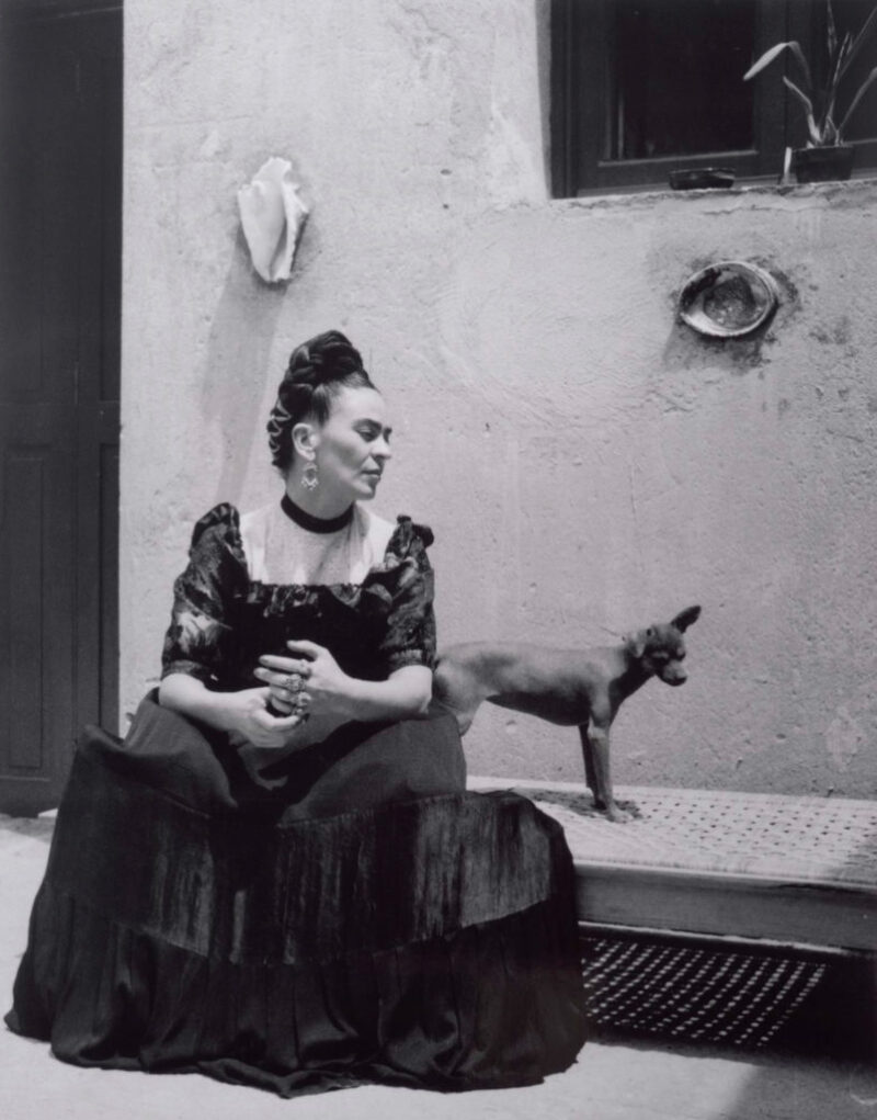Frida Kahlo / Frida Kahlo [ca. 1942-1947]  woman seated outside with Mexican hairless dog, facing toward right, two seashells set in wall by window  Kahlo, Frida Do NOT alter or crop image.  ALL RIGHTS RESERVED.  All digital files provided from the Center's collections are solely and specifically for one-time reproduction as noted on CCP Invoice and related documents.  NOTE: The Center RETAINS OWNERSHIP on ALL digital reproduction FILES with embedded metadata provided from the Center's Collections (and ANY related derivatives which may be generated by client.)   Scans of photographs provided by the Center for such one-time reproduction purpose may not be digitally archived by the client, publisher, any subcontractor and/or agent who may be working on this project.   All original and derivative digital copies of image files provided MUST BE DELETED from all digital storage media once the publication layout itself has been designed and archived.