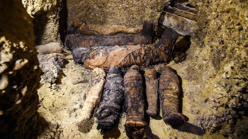 This picture taken on February 2, 2019 shows newly-discovered mummies wrapped in linen found in burial chambers dating to the Ptolemaic era (305-30 BC) at the necropolis of Tuna el-Gebel in Egypt's southern Minya province, about 340 kilometres south of the capital Cairo. - Egypt's Antiquities Minister said on February 2 that a joint mission from the ministry and Minya University's Archaeological Studies Research Centre found upon a collection of Ptolemaic burial chambers engraved in rock and filled with a large number of mummies of different sizes and genders. The minister added that the newly discovered tombs may be a familial grave for a family from the elite middle class. (Photo by MOHAMED EL-SHAHED / AFP)