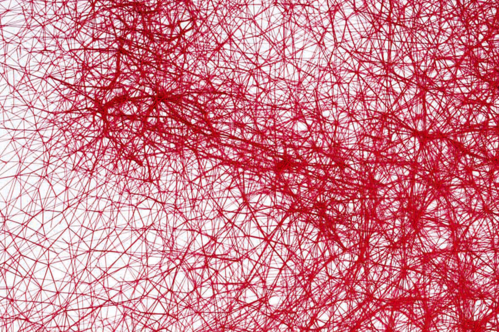 Chiharu Shiota, Fil rouge sur toile, Under the Skin, 2017