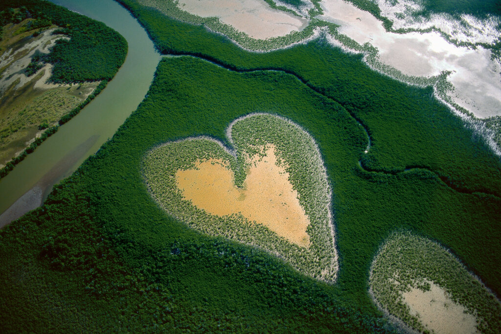Heart in Voh, New Caledonia (French Overseas Territory) (20°56' S – 164°39' E).