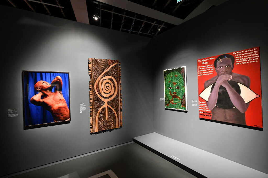 Vue exposition - 20 ans d'acquisition - Quai Branly Paris (7)