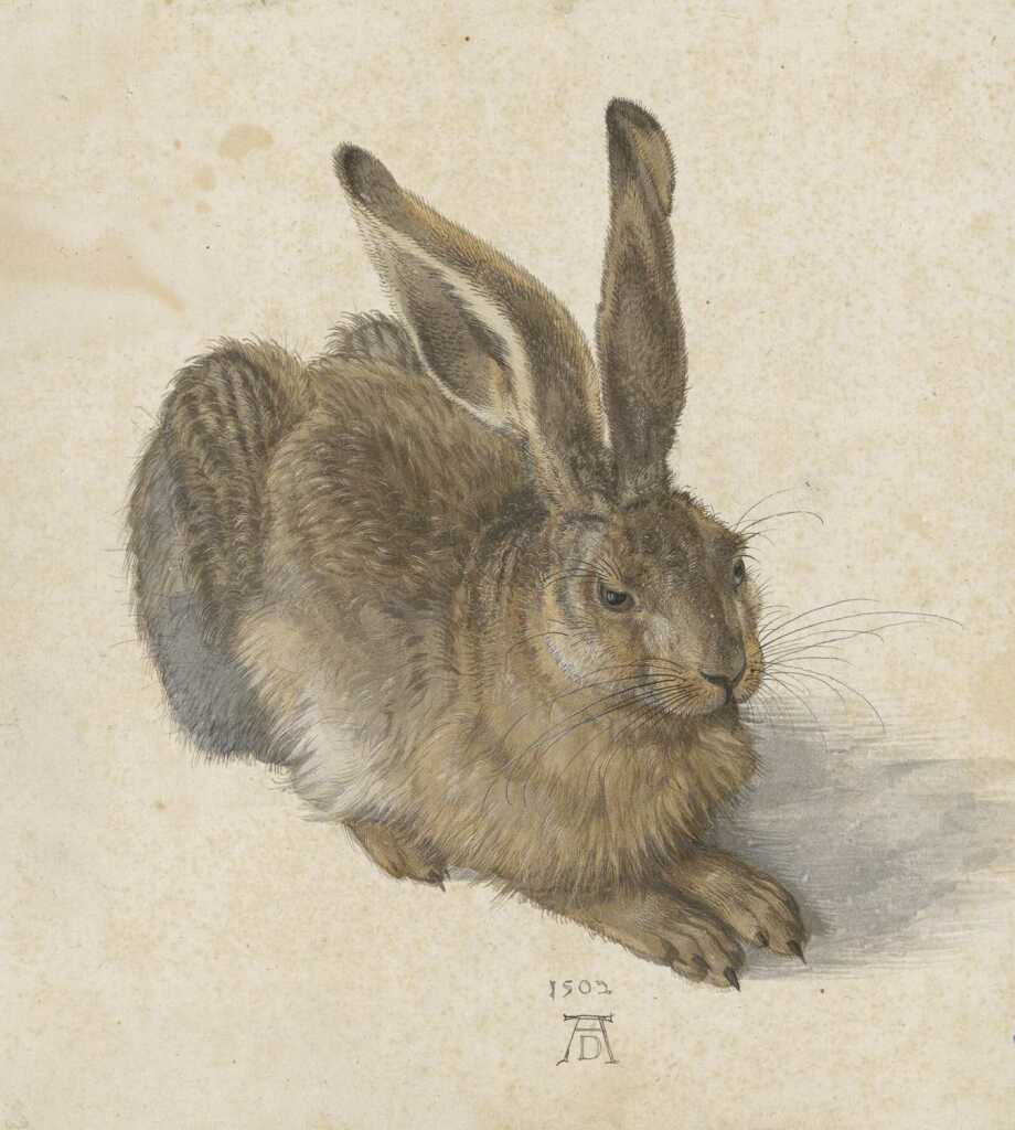 Albrecht Dürer, The Large Piece of Turf, 1503