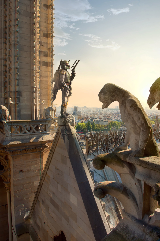 Chimeras on cathedral - Laurent Pons