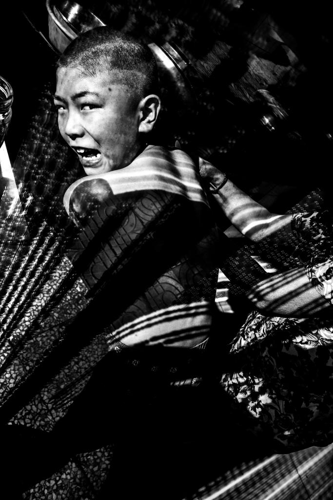 """""""Les Herbes folles"""" de Tian Jin"""