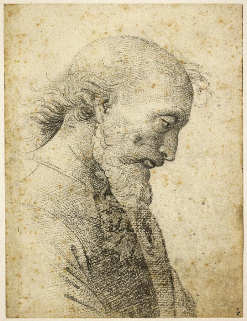 Pietro Vannucci, dit Le Pérugin - Buste d'homme