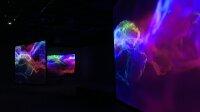 Vue de l'exposition - Centre Pompidou
