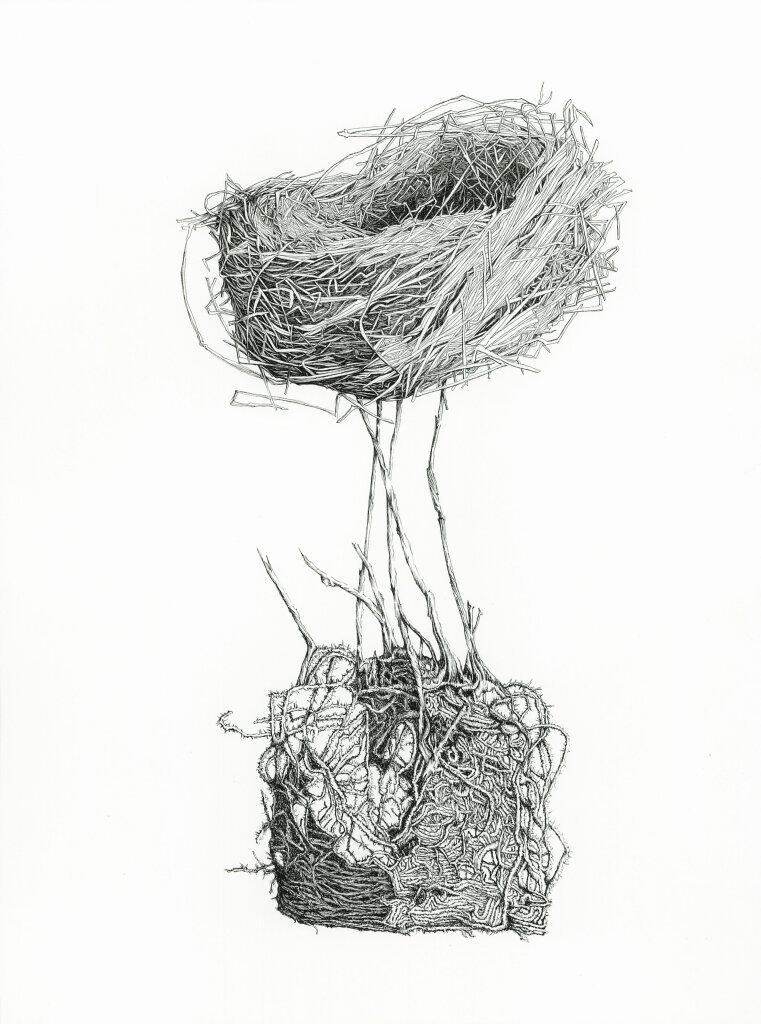 Fabienne Houzé-Ricard, Nid-racines n°7, 2019