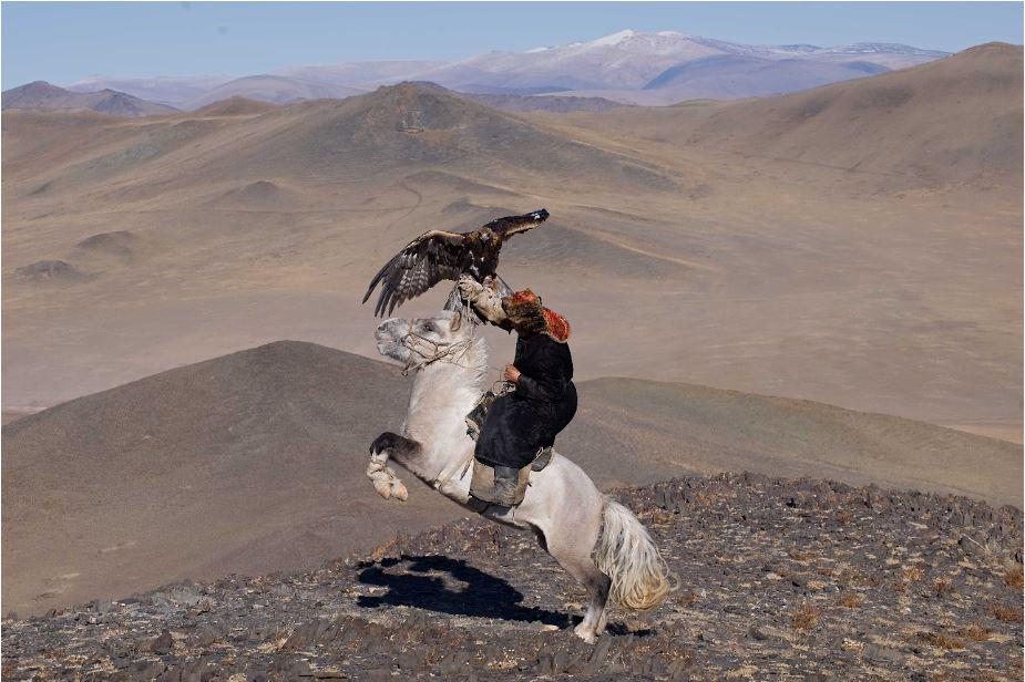 Hamid Sardar, White Pegasus - Mongolia