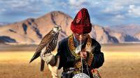 © Hamid Sarda - Young Falcon - Deloun Highlands - Olgii-Mongolia