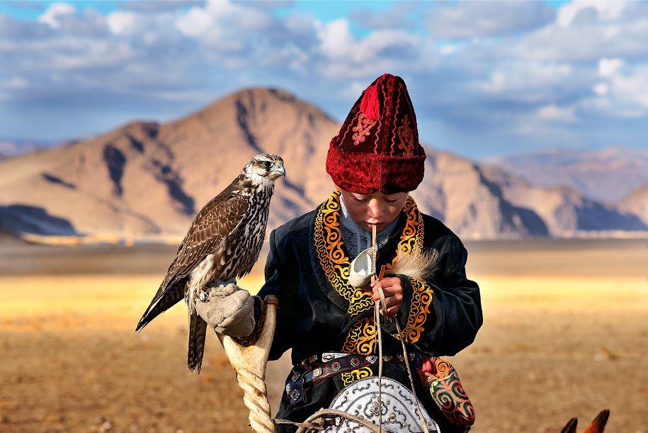 Hamid Sardar, Young Falcon - Deloun Highlands, Olgii, Mongolia