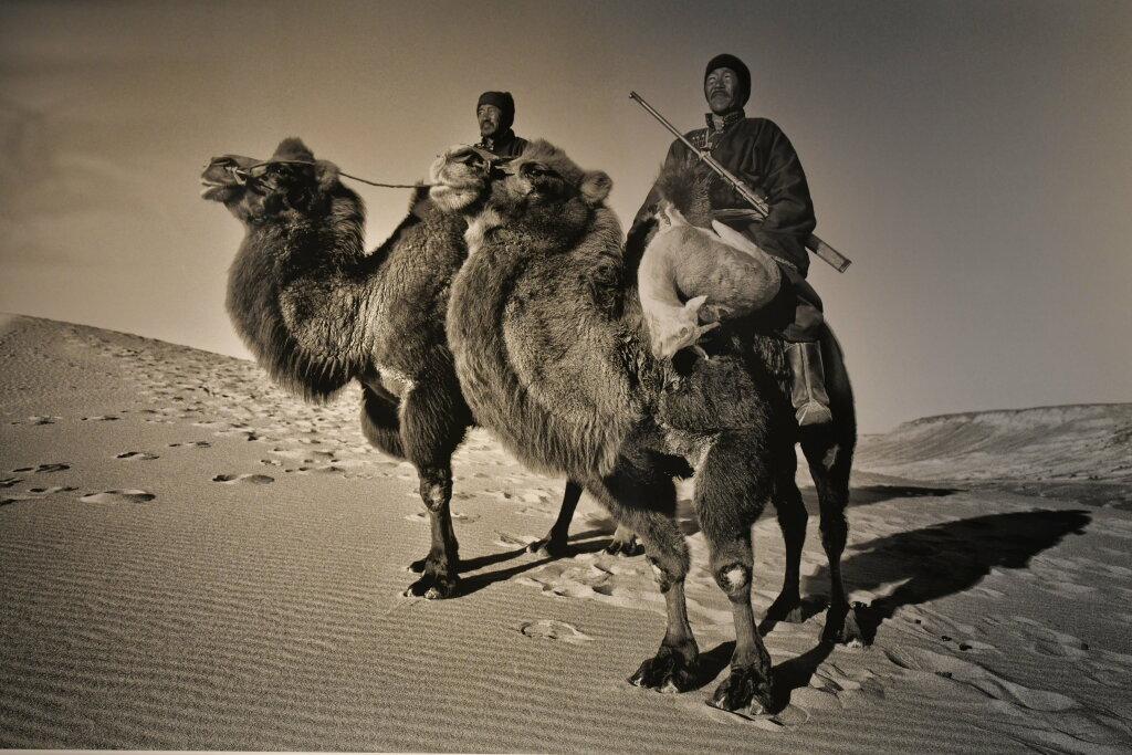 Hamid Sardar, Gazelle Hunters