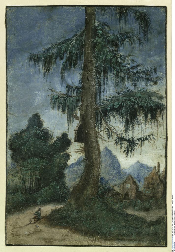 Albrecht Altdorfer, Paysage avec un grand épicéa
