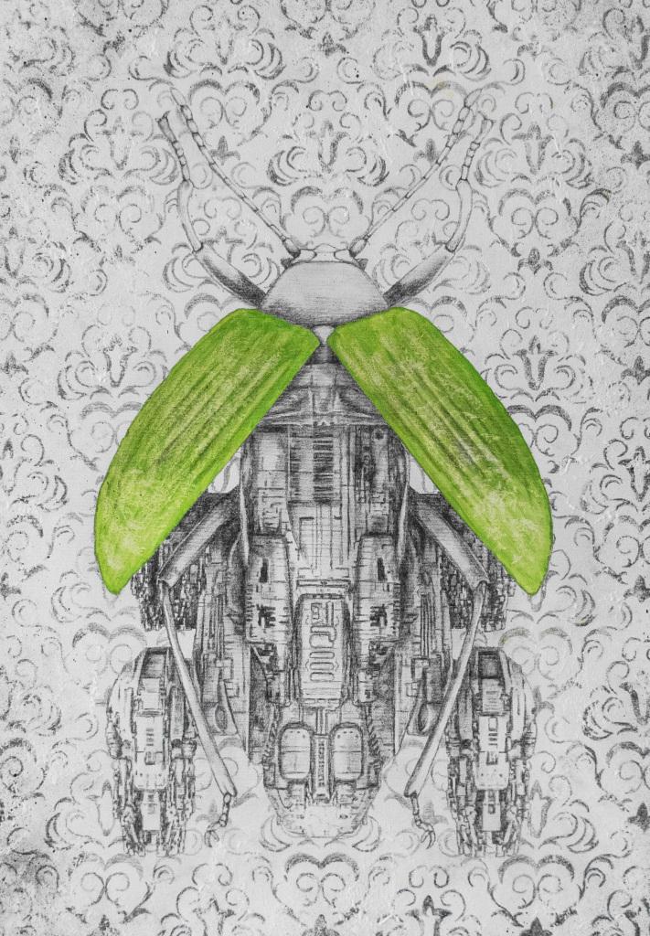 Camouflage - Exposition Araignées, lucioles et papillons - Musée en Hebre