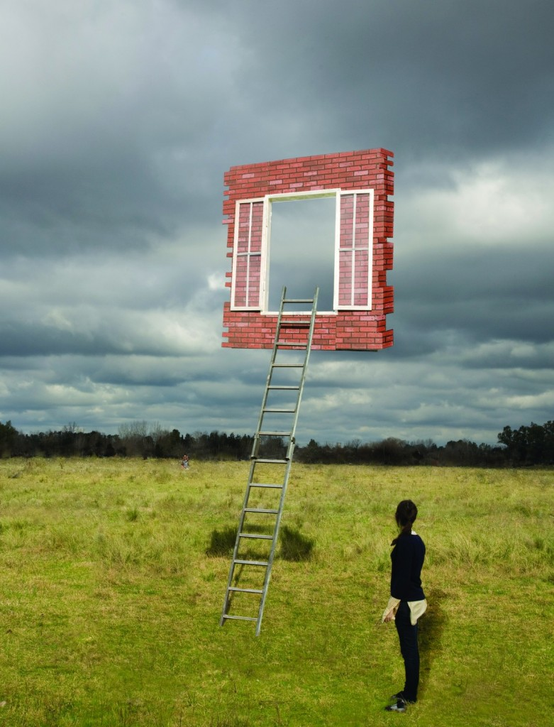 Leandro Erlich - Window and Ladder - Too Late for Help