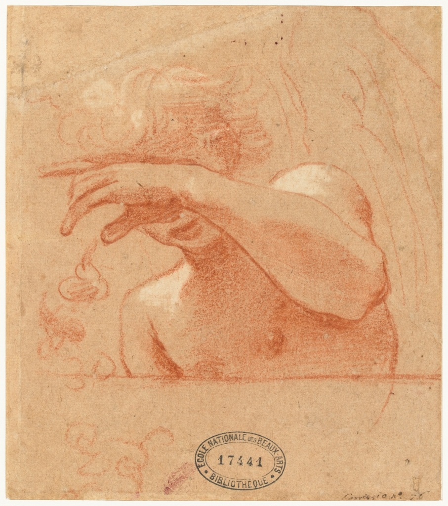 Ludovico Carrache, Étude d'ange à mi-corps