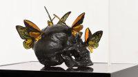Musée en Herbe - Araignées, lucioles et papillons 1