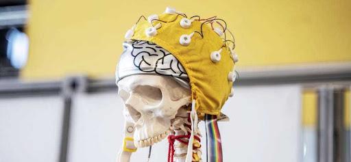 La semaine du cerveau