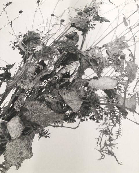 Anne-Lise Broyer, «55 jours plus tard... dessin à la mine graphite sur tirage argentique... 80x120 cm... Exposition « Le Chant de la phalène (Oraison - premier mouvement) »