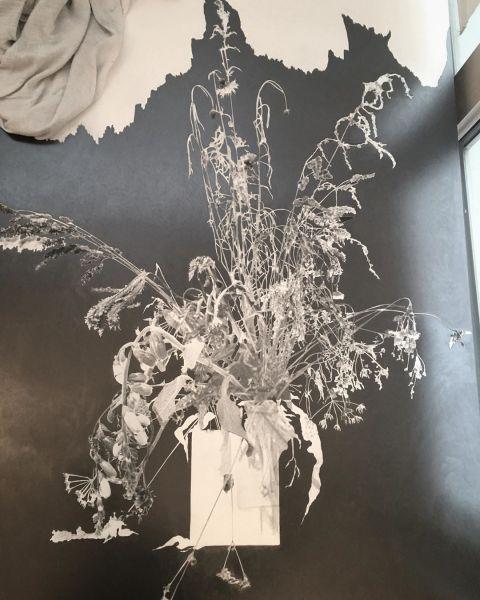 Anne-Lise Broyer, «Atelier... En cours... Bouquet 3... Détail, dessin à la mine graphite sur tirage argentique (80x120cm)... série « Le Chant de la phalène »»