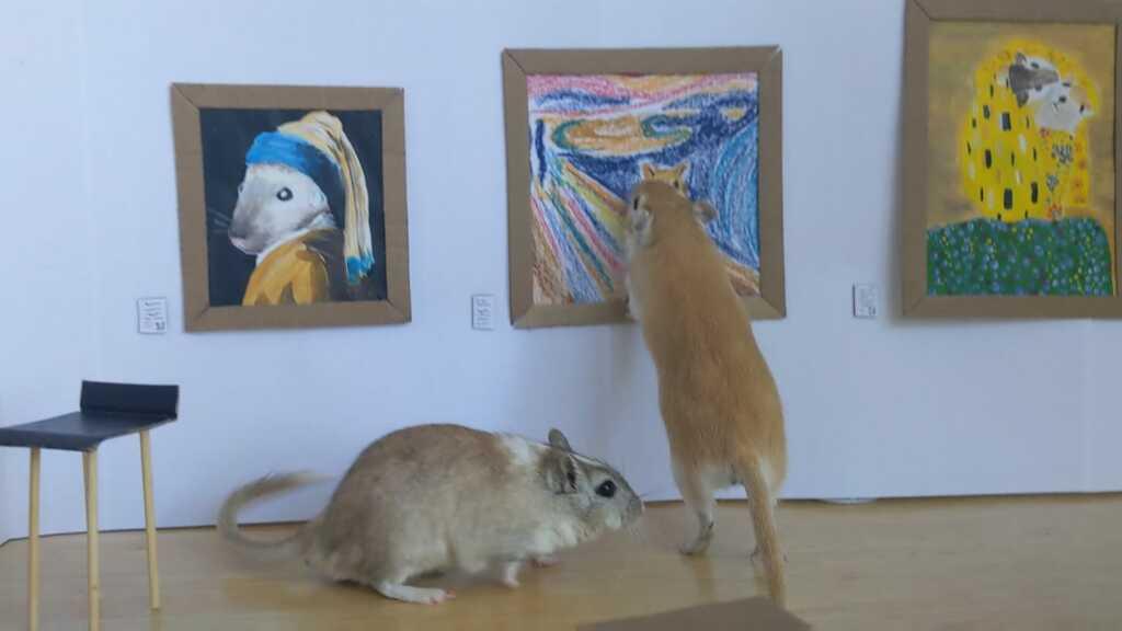 Gerbil Art Gallery