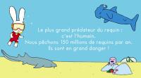 Exposition Simon même pas peur des requins - Aquarium