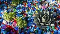 Festival des jardins de Chaumont-sur-Loire S. Rusterholtz, Le jardin de Gaïa… aïe aïe !.jpg 3