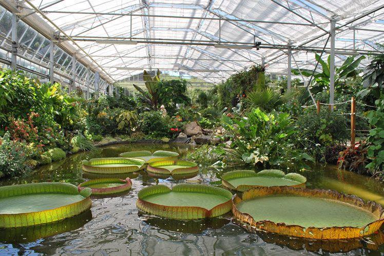 Serre - Jardins Suspendus