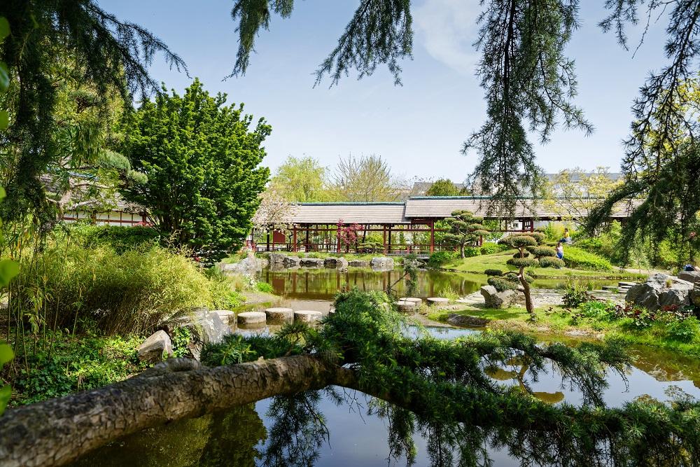 Jardin japonais sur l'Île de Versailles