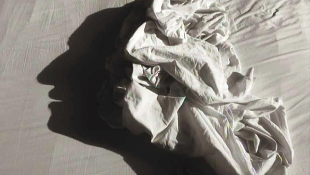 Alain Fleischer, Les hommes dans les draps, 2003