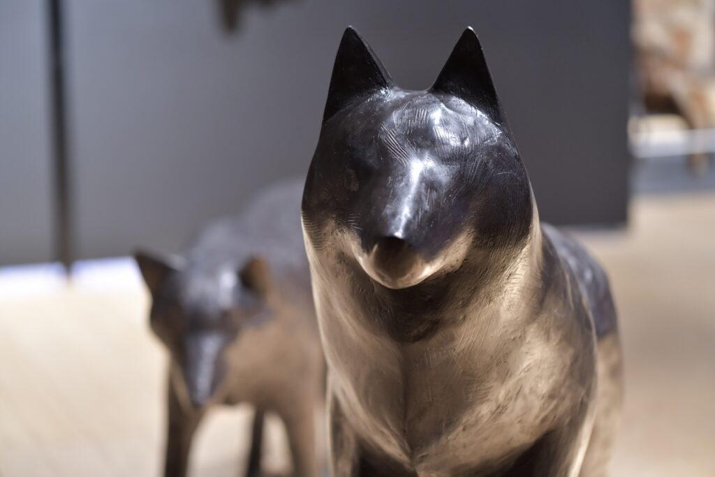 Vue de l'exposition Sauvages à Maison rouge - Musée des Vallées Cévenoles