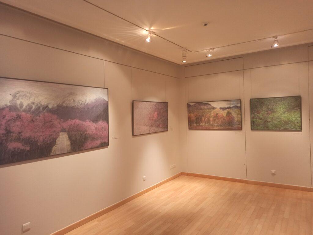 Vue de l'exposition Yang Ermin au Musée d'Art et d'Histoire Louis-Senlecq