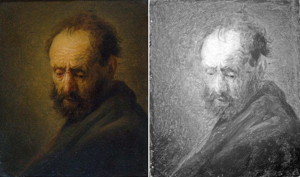 Rembrandt, Tête d'un homme barbu, vers 1630
