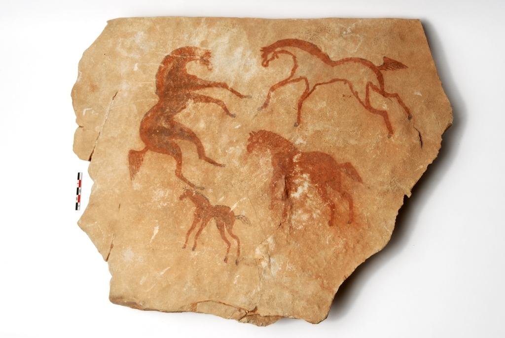Chevaux, 5e siècle av. J.-C. - 2e siècle ap. J.-C., Algérie, Sud oranais, Djorf