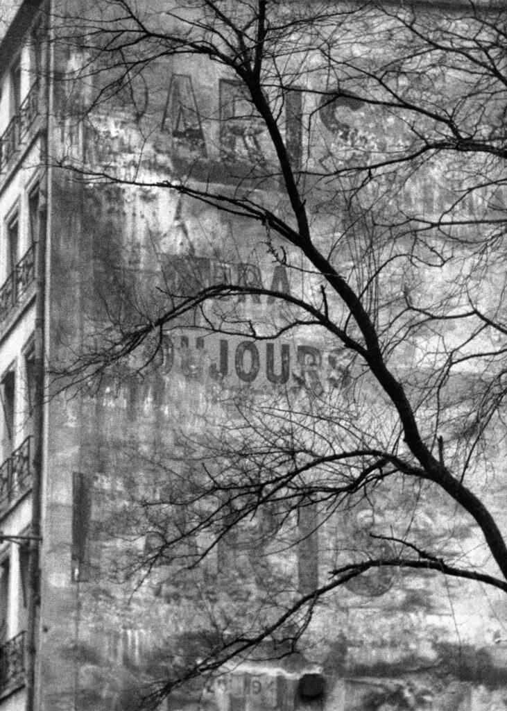 Frank Horvat, Arbre et ancienne publicité murale, Paris, 1955