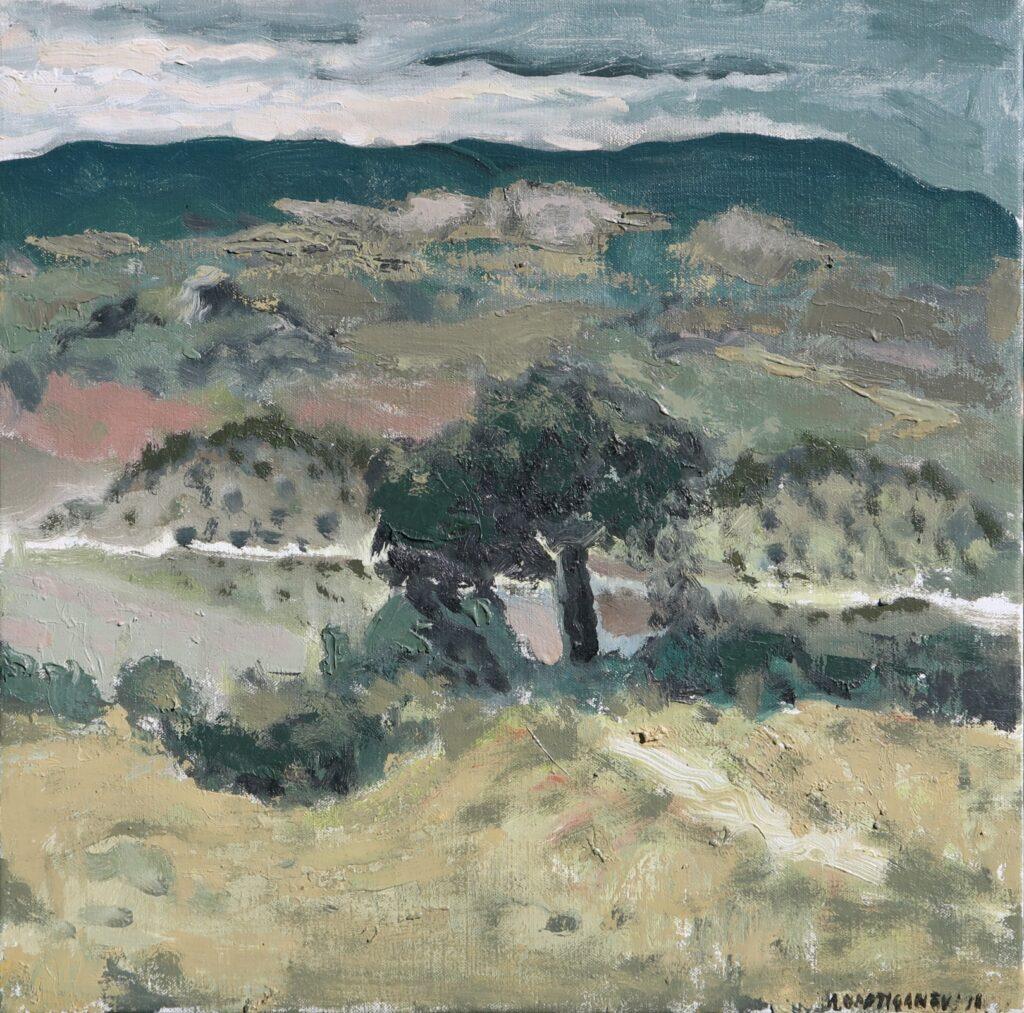 Hadjiganev, Paysage