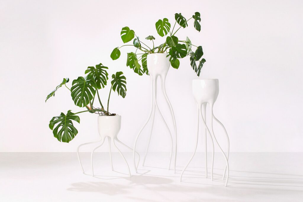 Tim van de Weerd, Monstera objects
