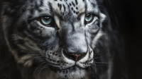 salon-artistes-animaliers-Marion Tubiana-Chioné-