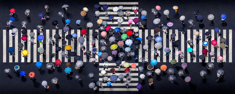 "1er prix ""Arts"" (Motifs) : Umbrella crossing"