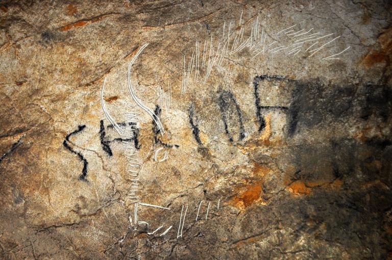 Bison gravé trouvé à Aitzbitarte V, photo et dessin du Dr Garate