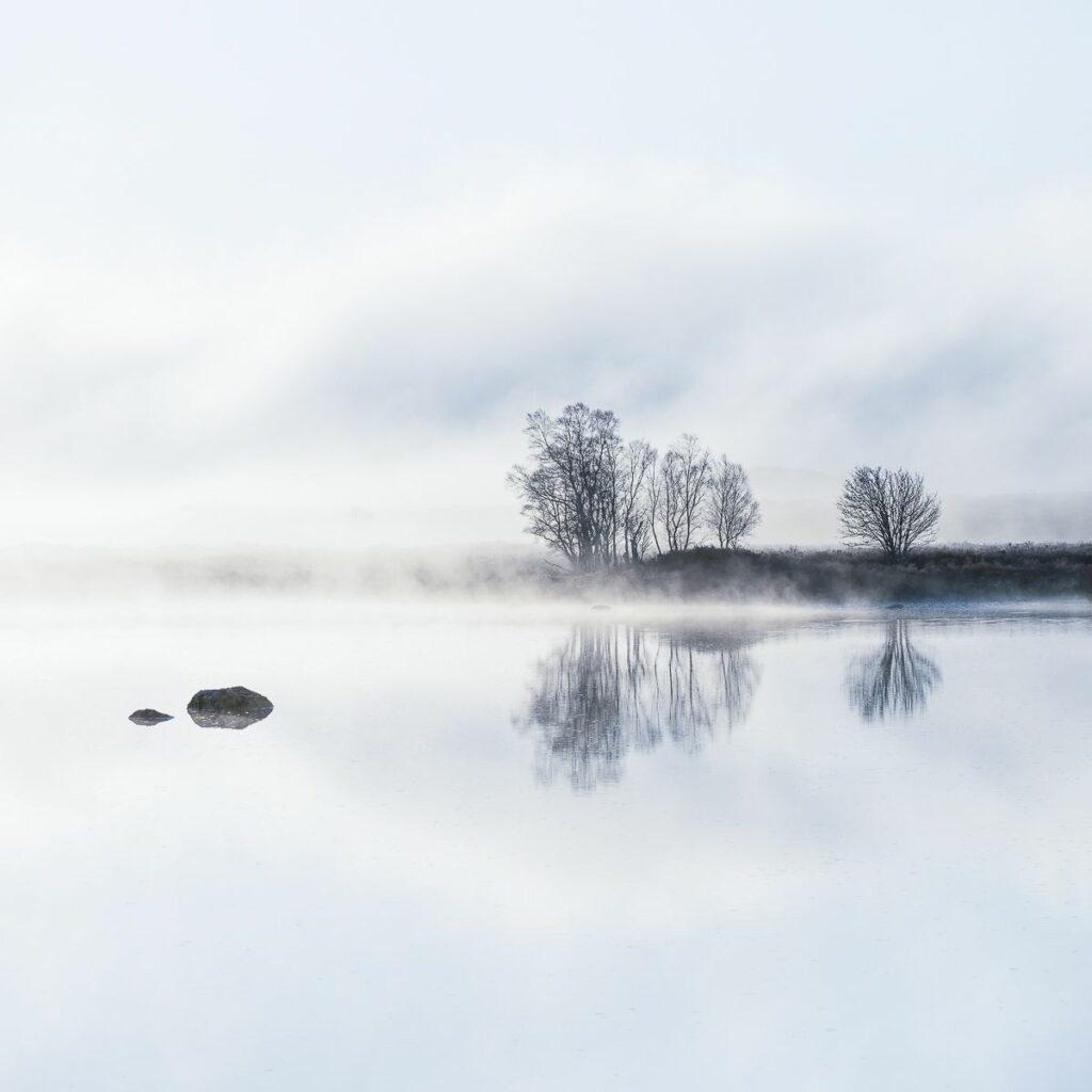 Jean-Michel Lenoir, Evanescence, Lever de brume dans une tourbière II, 2018
