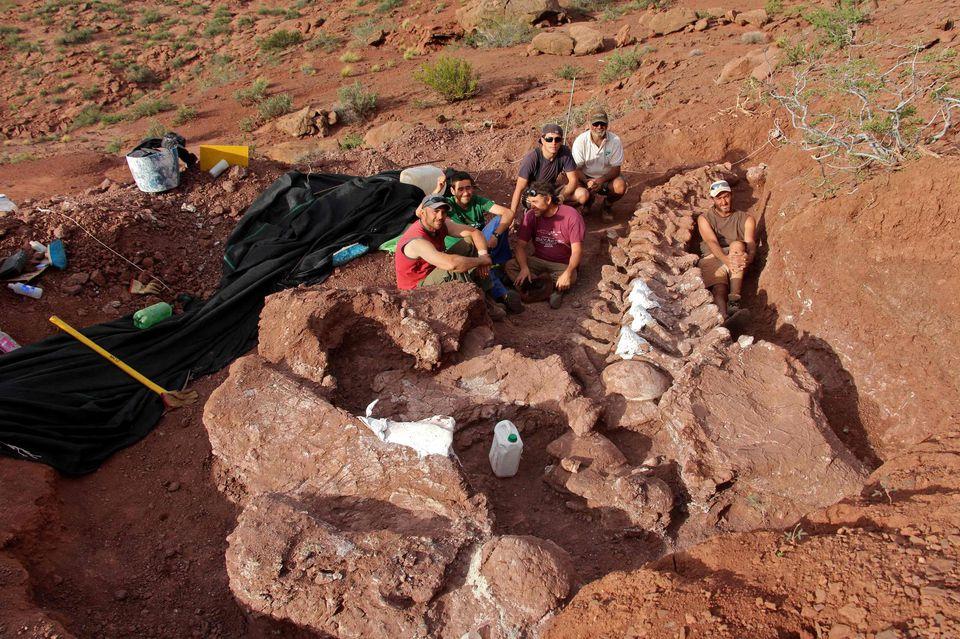 Les restes découverts en 2012 dans la province de Neuquén, en Argentine