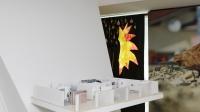 7.Vue de l'exposition Le Juste Prix.@Aurélien Mole _ Fondation Pernod Ricard