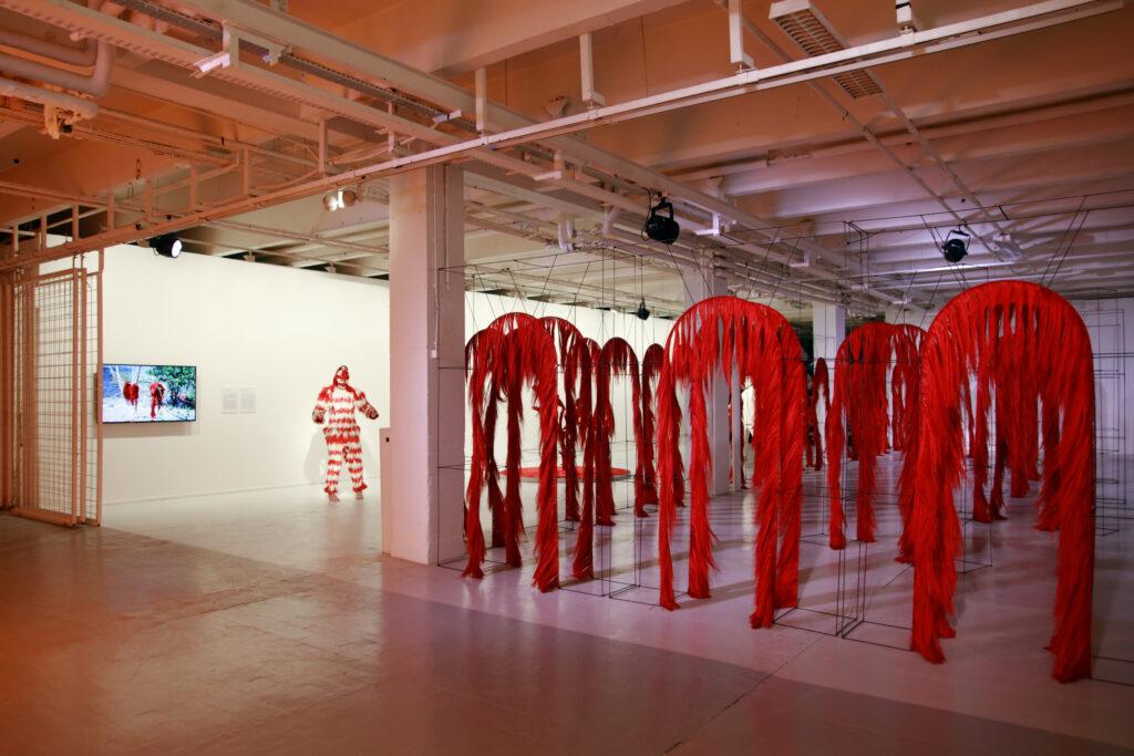 Vue de l'exposition Colors, Tripostal de Lille, Fernando Laposse (2)