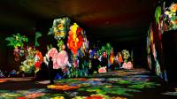 Exposition Paul Cezanne Les Carrières des lumières (2)