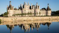 Exposition Arborescences, Chateau de Chambord, Domaine national de Chambord, Sophie Lloyd (2)