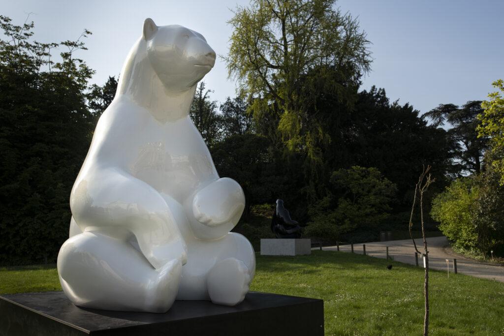 La banquise - Ours polaire