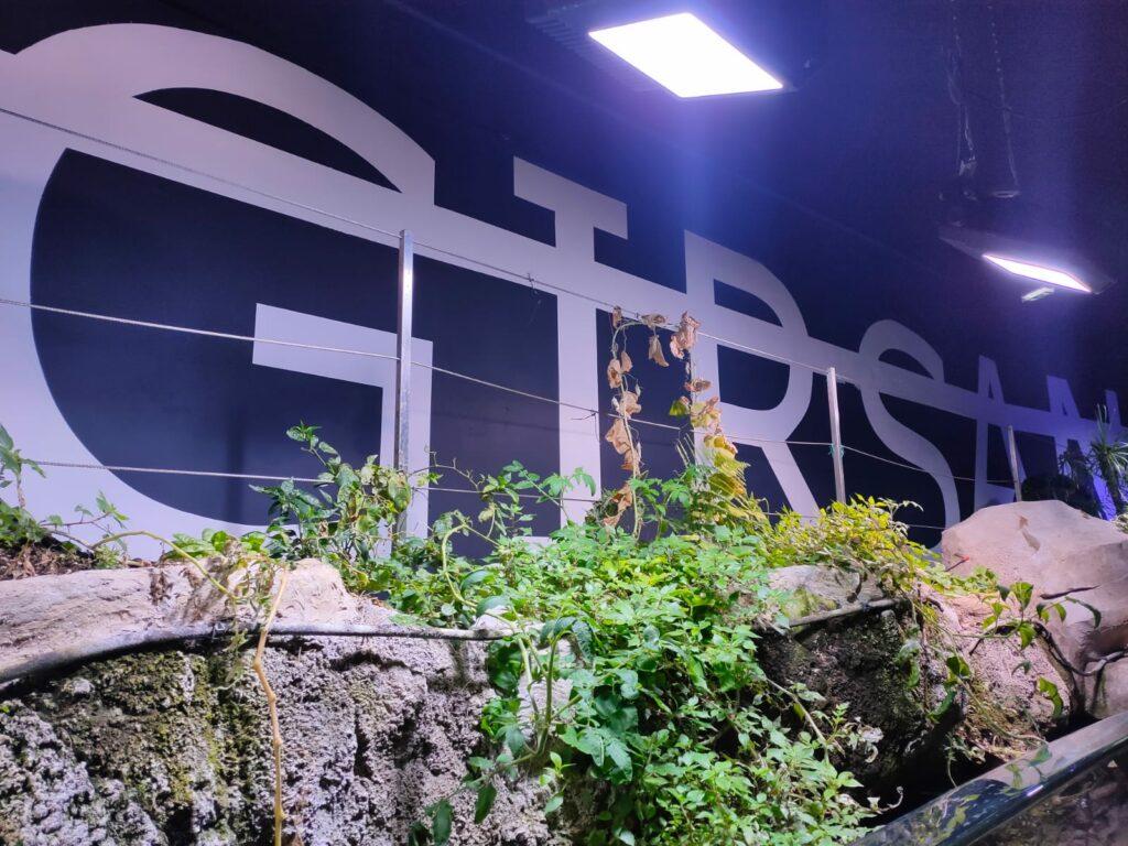 Vue de l'installation de l'exposition Immens(lim)ité, Rero, Aquarium de Paris (2)